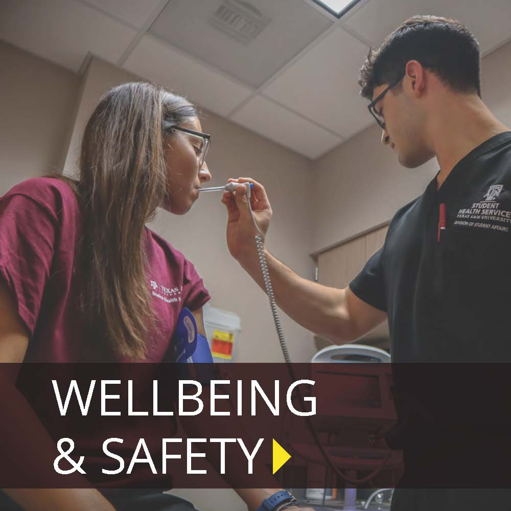 Click here to learn about Wellbeing and Safety